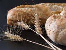 Pane e semi Fotografia Stock