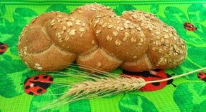 Pane e un orecchio Immagine Stock Libera da Diritti
