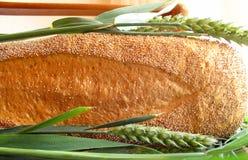 Pane e wheaties fotografia stock libera da diritti