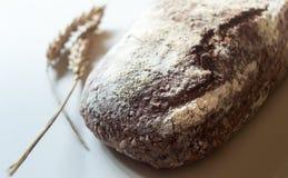 Pane fresco dell'artigiano del lievito naturale Immagine Stock
