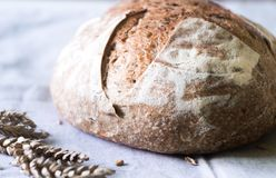 Pane fresco dell'artigiano del lievito naturale sull'asciugamano di cucina Immagine Stock Libera da Diritti