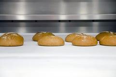 Pane rotondo di recente al forno sul nastro trasportatore nel forno immagine stock libera da diritti