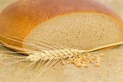 Pane rotondo di segale e del grano, orecchio del grano e grano Fotografia Stock Libera da Diritti