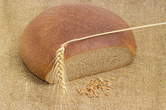 Pane rotondo di segale e del grano, punta del grano e grano del grano Fotografie Stock Libere da Diritti