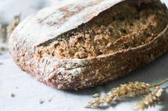 Pane rustico e crostoso dell'artigiano Fotografie Stock