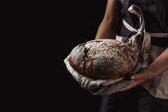 Pane rustico in mano del panettiere, alimento sano Fotografia Stock