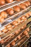 Pane sullo scaffale alla fabbrica del pane Fotografie Stock Libere da Diritti