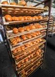 Pane sullo scaffale alla fabbrica del pane Fotografia Stock Libera da Diritti
