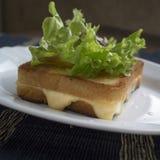 Pane tostato con formaggio Fotografia Stock Libera da Diritti