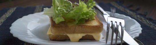 Pane tostato con formaggio Immagine Stock