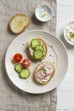 Pane tostato con il cetriolo, il ravanello ed il formaggio Fotografia Stock