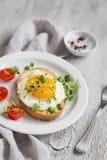 Pane tostato con l'uovo ed i pomodori Fotografia Stock