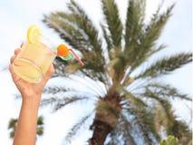 Pane tostato del cocktail alla vacanza tropicale del ricorso Fotografia Stock