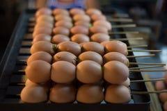 Pane tostato dell'uovo sulla grata dell'acciaio inossidabile Alimento della via in Tailandia Fotografia Stock