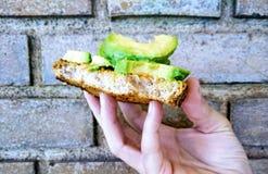 Pane tostato di alto livello dell'avocado sul fondo del mattone fotografia stock