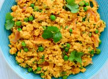 Paneer Bhurji or scrambled cottage cheese curry. Paneer Bhurji made from Paneer or Indian cottage cheese and tastes similar to scrambled eggs.It is usually Stock Image