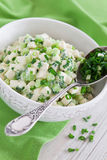 Paneer cheese salad. Paneer cheese cucumber and onion salad, selective focus Stock Photo