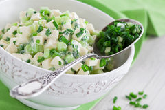 Paneer cheese salad. Paneer, cucumber and onion salad, selective focus Stock Photography
