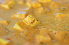 Paneer. A close up view of the tasty Indian food of Paneer makhani Royalty Free Stock Photo