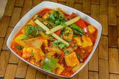 Paneer-Curry Lizenzfreie Stockbilder