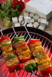 Paneer. Grilled paneer along with barbecue Stock Photo
