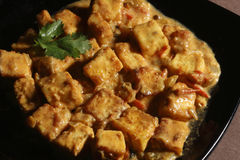 Paneer Korma with Rice from India. Close up view. Paneer korma is rich gravy made with cottage cheese and spices Stock Photography