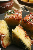 Paneer Palak Dhokla - A snack from India Royalty Free Stock Images