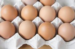 Panel eggs Royalty Free Stock Image
