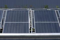 Panel słoneczny dla energetyczny zbierać Fotografia Stock