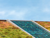 Panel słoneczny na dachu zakrywającym z sedum dla odosobnienia obrazy royalty free