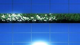 Panel słoneczny nad trawą i dasies Zdjęcia Stock