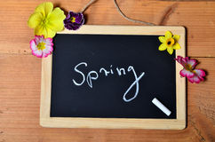Panel Spring wood background Stock Images