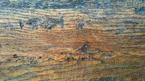 Panel_walnut de madeira tratado do assoalho foto de stock royalty free