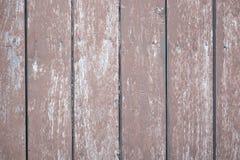 panel wood Стоковые Фото