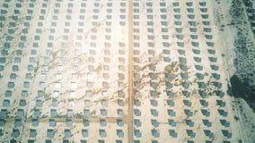 Paneler för solenergistation i solen, flyg- sikt lager videofilmer