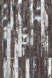 Paneling de madeira da parede Foto de Stock Royalty Free