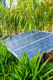 The panels of solar cell in a garden. Stock Image