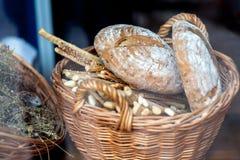 Panera loaves och bagetter i en vide- korg royaltyfri bild