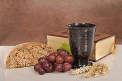 panera wine Royaltyfri Foto