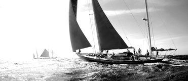 Free PANERAI CLASSIC YACHTS CHALLENGE 2008 Royalty Free Stock Photo - 6398705
