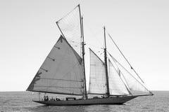 Panerai klassische Yachten fechten 2010 - Imperia an Lizenzfreies Stockbild