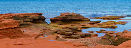 Panerama of Red Rock at the Ocean Royalty Free Stock Images