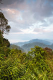 Panerntung Mountain. And the deep forest in Thailand Stock Photo