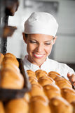 Panes de Looking At Fresh del panadero en panadería Imágenes de archivo libres de regalías