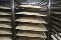 Panes del pan de pan amargo que esperan el horno imágenes de archivo libres de regalías