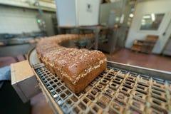 Panes del pan en la fábrica Imágenes de archivo libres de regalías