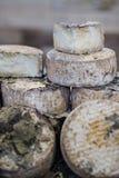 Panes envejecidos grandes del queso imagenes de archivo