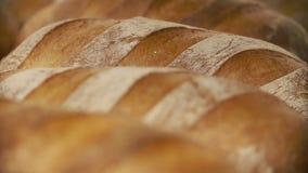 panetteria File delle pagnotte del pane fresco che si trovano sullo scaffale Processo bollente del pane Industria alimentare e pr video d archivio