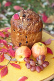 Panettone. Holiday Bread. Stock Photography