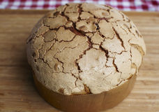 Panettone typical Christmas bread in Italy Stock Images